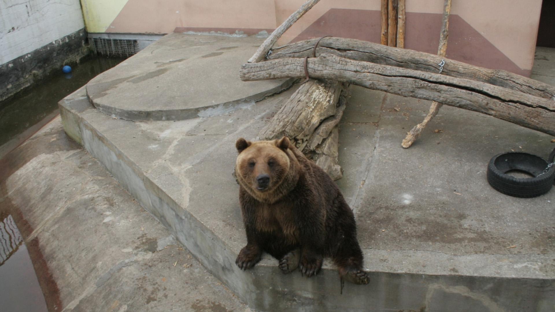 Zoo w Braniewie